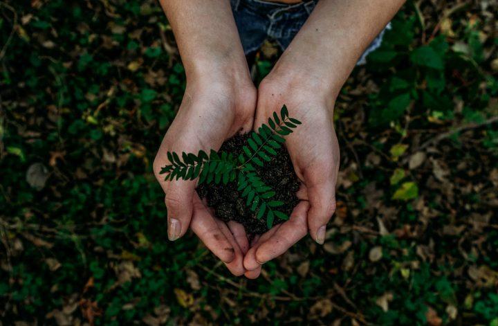 Planeta tierra hábitos sostenibles